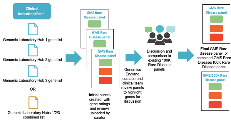 Gene panel review process